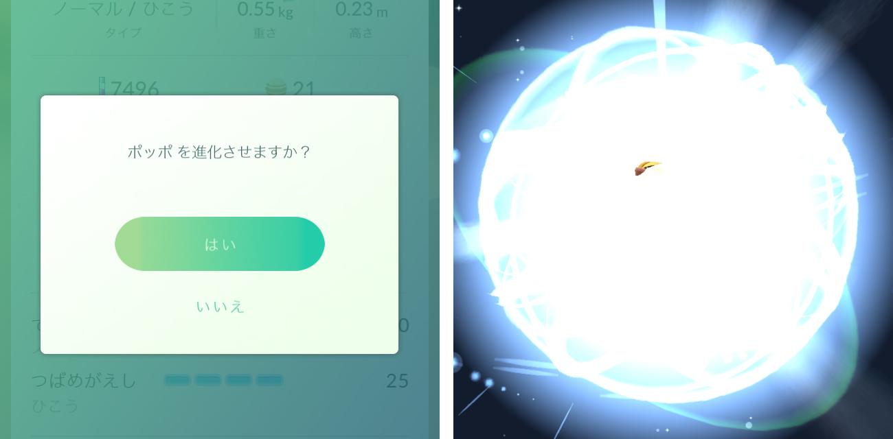 ポケモンGO【攻略】:しあわせタマゴとポッポまとめ進化で爆速レベル上げ!