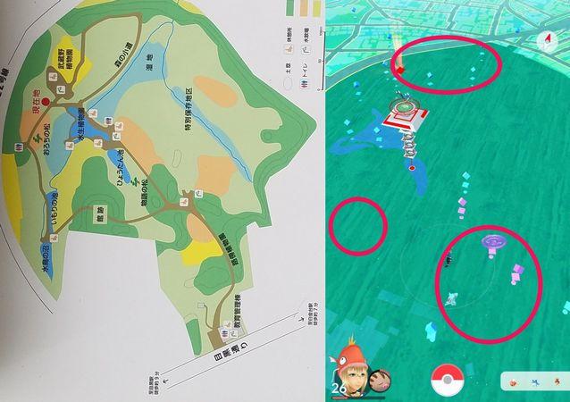 [3/23版]ポケモンGO【攻略】: オーダイルを確実にゲット!自然教育園にワニノコが大量発生中
