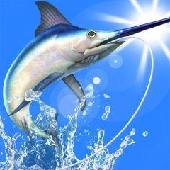 僕の釣り物語