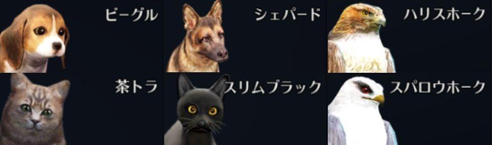 黒い砂漠モバイル【攻略】:狩りに不可欠!ペットのメリットと交換の仕方