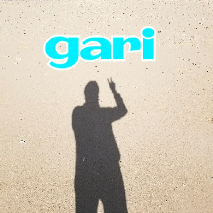 インフルエンサー【名鑑】:gari